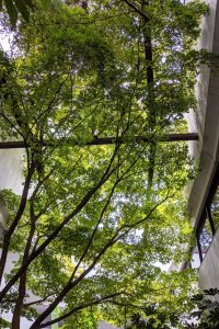 Our building atrium